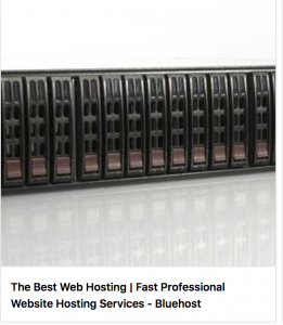 vaults hosting bluehost